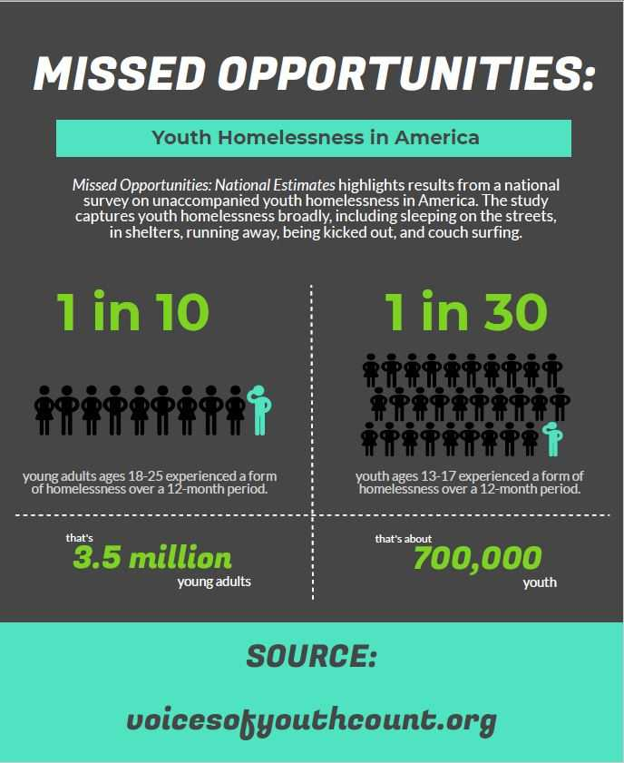 Number of Youth Experiencing Homelessness   Infographic   Voices of Youth Count